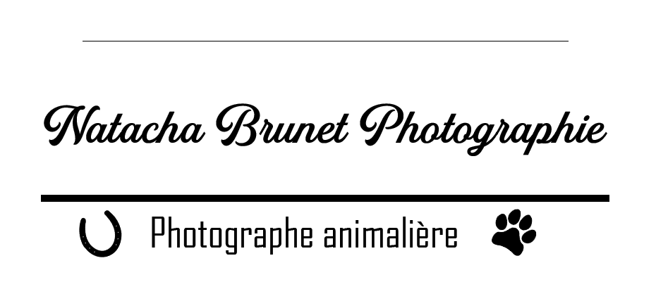 Natacha Brunet Photographie