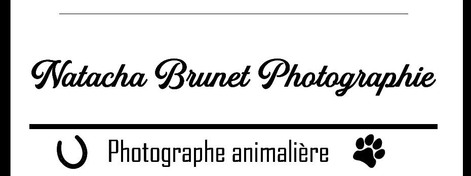 Natacha Brunet Photographie